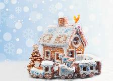 Galletas clasificadas del pan de jengibre de la Navidad Imagenes de archivo