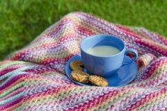 Galletas con leche Fotos de archivo libres de regalías