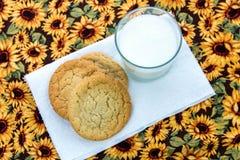 Galletas de azúcar y vidrio llanos de leche Fotos de archivo