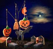 Galletas de Halloween que cuelgan en un árbol en el cielo nocturno Imágenes de archivo libres de regalías