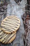 Galletas de la avena con el chocolate Imagen de archivo