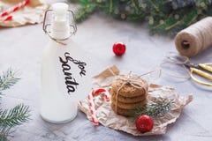 Galletas de la leche y de harina de avena para Santa Claus foto de archivo