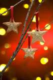 Galletas de la Navidad como decoración del árbol Fotos de archivo libres de regalías