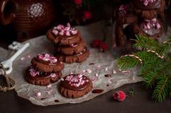 Galletas de la Navidad del chocolate con el bastón de caramelo machacado Imagen de archivo