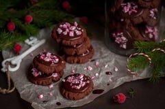 Galletas de la Navidad del chocolate con el bastón de caramelo machacado Foto de archivo