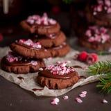 Galletas de la Navidad del chocolate con el bastón de caramelo machacado Fotografía de archivo