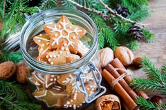 Galletas de la Navidad del pan de jengibre Imagenes de archivo
