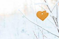 Galletas de la Navidad del pan de jengibre en una rama de árbol Imágenes de archivo libres de regalías