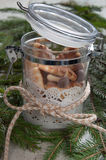 Galletas de la Navidad en el tarro de cristal Imágenes de archivo libres de regalías
