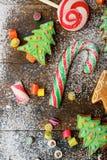 Galletas de la Navidad en la forma del árbol, del bastón y del caramelo derramados con nieve Fotos de archivo libres de regalías