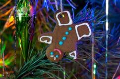 Galletas de la Navidad que cuelgan en el árbol de navidad Fotografía de archivo