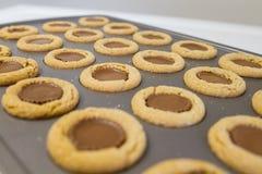 Galletas de la taza de la mantequilla de cacahuete Imágenes de archivo libres de regalías