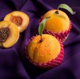 Galletas de los macarrones imagen de archivo libre de regalías