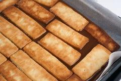 Galletas de los pasteles sobre la salsa 2 del caramelo Foto de archivo