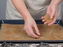 Galletas del árbol de navidad del pan de jengibre en la bandeja homemade Fotos de archivo