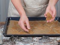 Galletas del árbol de navidad del pan de jengibre en la bandeja homemade Imágenes de archivo libres de regalías