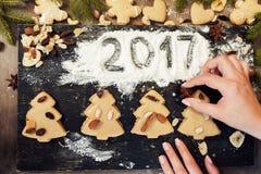 Galletas del árbol de navidad del pan de jengibre y muestra 2017 Foto de archivo libre de regalías