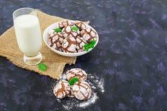 Galletas del chocolate y un vidrio de leche en fondo oscuro Fotos de archivo