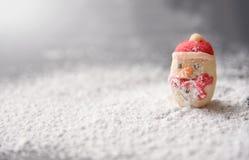 Galletas del muñeco de nieve en nieve Imagen de archivo libre de regalías
