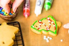 Galletas del pan de jengibre fotos de archivo libres de regalías