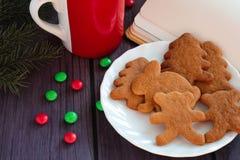 Galletas del pan de jengibre de la Navidad, chocolate caliente Imagen de archivo libre de regalías