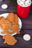 Galletas del pan de jengibre de la Navidad, chocolate caliente Imagenes de archivo