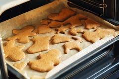 Galletas del pan de jengibre, formas e ingredientes hechos en casa de la hornada Imagen de archivo