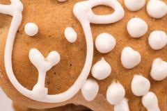 Galletas del pan de jengibre macras Fotos de archivo libres de regalías