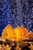 Galletas en la forma de las estrellas y de los árboles de navidad Imágenes de archivo libres de regalías