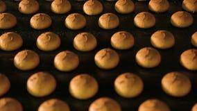Galletas frescas hechas en la fábrica metrajes