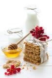 Galletas hechas en casa de la avena con la miel, las pasas rojas, el yogur y la leche Foco selectivo Fotos de archivo libres de regalías