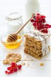 Galletas hechas en casa de la avena con la miel, las pasas rojas, el yogur y la leche Foco selectivo Foto de archivo