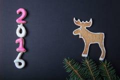 Galletas hechas en casa del pan de jengibre con el branc de la formación de hielo y del árbol de navidad Imagenes de archivo