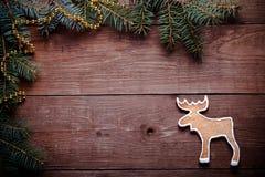 Galletas hechas en casa del pan de jengibre con el branc de la formación de hielo y del árbol de navidad Imagen de archivo libre de regalías