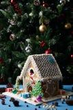 Galletas hechas en casa del pan de jengibre con los árboles de navidad Fotos de archivo libres de regalías