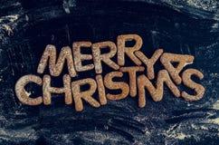 Galletas hechas en casa del pan de jengibre de la Navidad Imagen de archivo