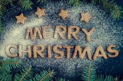 Galletas hechas en casa del pan de jengibre de la Navidad Fotografía de archivo