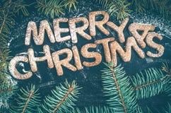 Galletas hechas en casa del pan de jengibre de la Navidad Foto de archivo