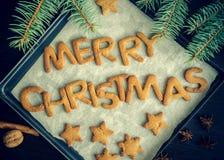 Galletas hechas en casa del pan de jengibre de la Navidad Foto de archivo libre de regalías