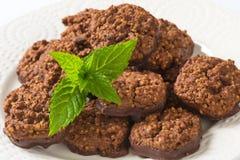 Galletas orgánicas del chocolate de la quinoa Imágenes de archivo libres de regalías