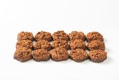 Galletas orgánicas del chocolate de la quinoa Imagenes de archivo