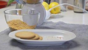 Galletas que se agrietan y de mezclas para cocinar la torta de la crema del queso con los arándanos almacen de metraje de vídeo