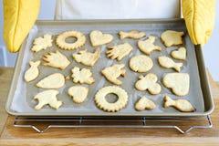 Galletas recientemente cocidas al horno Foto de archivo libre de regalías