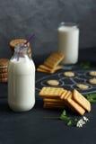 Galletas y botella saladas de leche a bordo Imagen de archivo libre de regalías