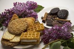 Galletas y chocolate 06 Fotografía de archivo libre de regalías