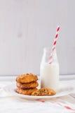 Galletas y leche Fotografía de archivo