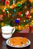 Galletas y leche para Santa Imágenes de archivo libres de regalías