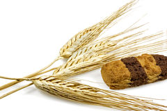 Galletas y puntos del trigo Foto de archivo libre de regalías
