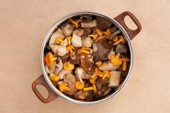 Galletti dei funghi e Porcini nitido Immagine Stock