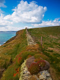 Galley Head. Stone wall,grass and wild flowers on cliff edge at Galley Head, Co.Cork, Ireland Stock Photos